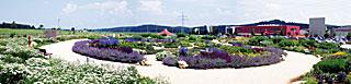 Kräutergarten Albgold