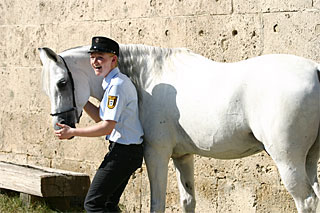 Pferd_Marbach_IMG_6183