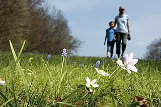 Karge Schönheit: Nicht einmal zehn Kilometer von Reutlingens Zentrum entfernt grüßt leise der Frühling der Alb.