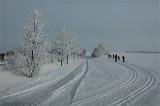 Ski_Loipe_Langlauf_3BFW9859