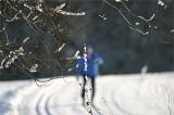 Ski_Loipe_Langlauf_IMG_1472