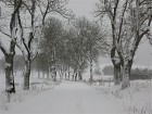 winter_truppenplatz_IMG_241