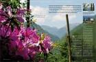 Lago_Maggiore_Val_Grande_Aufmacher_Bluete_Blume