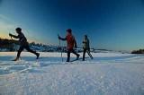 Skilanglauf3BFW1415
