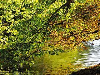 Naturpark-Schwäbisch-Fränki