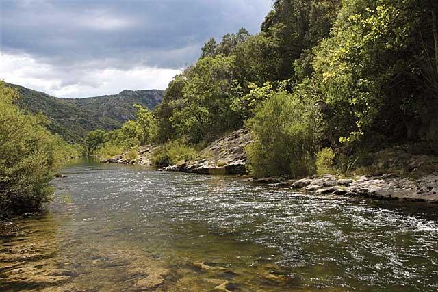 Alb Fluss